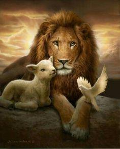 He came as a Lamb, the Lamb of God And He will return as the Lion of Judah Er kam als Lamm, das Lamm Gottes, und er wird als der Löwe von Juda zurückkehren Lion Pictures, Jesus Pictures, Lion And Lamb, Lion Wallpaper, Jesus Art, Prophetic Art, Biblical Art, Lion Art, Art Store