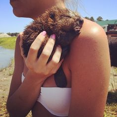19 Reasons Baby Beavers Are The Most Underrated Woodland Critters Baby Animals Pictures, Baby Pictures, Cute Pictures, Funny Animals, Cute Animals, Pretty Animals, Farm Animals, Baby Beaver, Woodland Critters