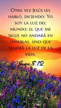 Latin Quotes, Spanish Quotes, Bible Quotes, Biblical Verses, Scriptures, Jesus Is Life, Religion Quotes, Christian Verses, In Christ Alone