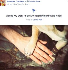 Companion Makes Cute Dog His Valentine in a Quirky Couples Photo Shoot | Jonathan Graziano