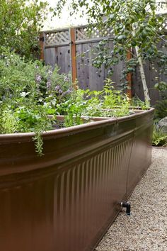 The typical rectangular raised bed is a space hog that tends to dominate a garden. The other day I ran across a stylish alternative—painted livestock water troughs. Here's how to get the same look: