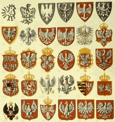 Historical Flags of Our Ancestors - The Evolution of the Polish Coat-of-Arms - Part 1 Medieval Symbols, Poland History, Polish Language, Visit Poland, Polish Folk Art, Banner, Arte Popular, My Heritage, Coat Of Arms