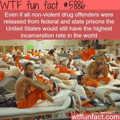 America's prison population - WTF fun facts