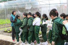 同學們在有機農場內輕鬆地學習有機耕種的知識!