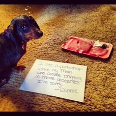 omg my Olivia totally did this exact same thing with a steak!
