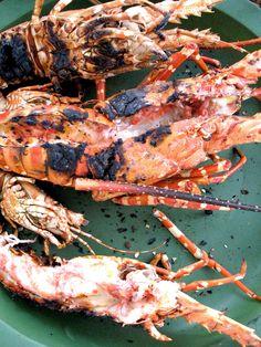 Kreeft op de BBQ – The Man With The Pan Recipe: http://www.themanwiththepan.com/bbq-lobster/