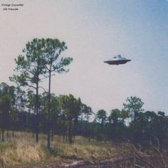 Download Vintage Cucumber – Ufo Freunde (2015) [MP3]