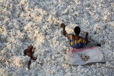 Getty Images anuncia parceria com o renomado fotógrafo ambiental Yann Arthus-Bertrand | FHOX  Reconhecido por sua fotografia aérea e produção de filmes o fotógrafo destaca a relação entre os humanos e a ecologia