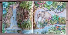Magic River ,  Magical Jungle , Johanna Basford