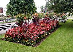 nice rectangular flowerbed