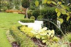 Galeria zdjęć - Poradnik: Jak zaprojektować i założyć ogród, cz. 3 - projektowanie - Ogrodowisko