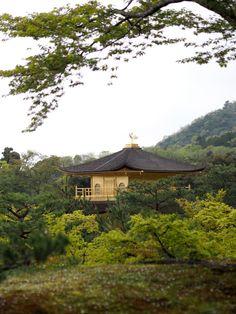 Kinkaku-ji temple in Kyoto aka Golden Pavillion, Japan   Photo: Jenni Rotonen / Pupulandia