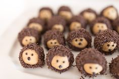 This Buckeye Recipe, (known as Chocolate Peanut Butter Balls), is a decadent mix of peanut butter and chocolate. Get the steps to make this classic dessert! Woodland Theme Cake, Woodland Baby, Hedgehog Birthday, Dad Cake, Baby Shower Desserts, Peanut Butter Balls, Galletas Cookies, Thanksgiving Treats, Chocolate Recipes