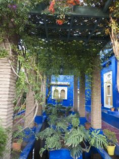 More fabulous blue at Majorelle. Blue is associated with the sky, heaven and water in Moroccan culture Climbing Vines, Marrakech, Morocco, Heaven, Sky, Culture, Spaces, Water, Blue