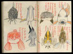 Sketch 2014 on Behance Illustration Sketches, Illustrations, Drawing Sketches, Art Drawings, Collages, Artist Sketchbook, Nature Drawing, Sketchbook Inspiration, Fish Art