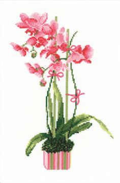 Pink Orchid Cross Stitch Kit By Riolis