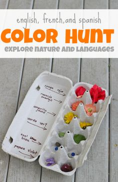 teach kids Spanish and French color words with an outdoor color hunt