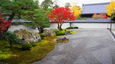紅葉の京都南禅寺の方丈庭園の見ごろの紅葉 2014年11月23日