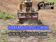 http://www.griggstree.com/lot-and-land-cleaning