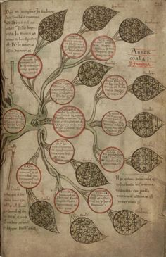 "Tree of vices, in ""Liber Floridus"", creation: 1120, author: Lambert of Saint Omer, edition: 1121, copy scribed by the author himself, folio 209r, Universiteitsbibliotheek Gent"