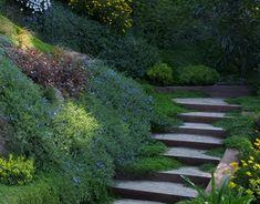 Jardín en pendiente, junto al mar | Landshaft - empresa de paisajismo en Barcelona