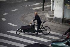 cargo bike with dog.