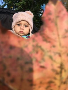 Baby in fall