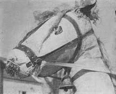 Výsledek obrázku pro maska kůň vyrobit Stick Horses, American, Wooden Horse