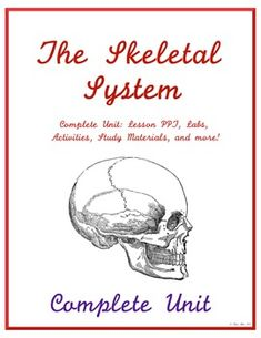 Complete Skeletal System Unit - Middle School Science New product!