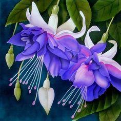 silk painting by Leonard Thompson Rare Flowers, Exotic Flowers, Amazing Flowers, Beautiful Flowers, White Flowers, Fuchsia Plant, Fuchsia Flower, Hanging Flower Baskets, Silk Art