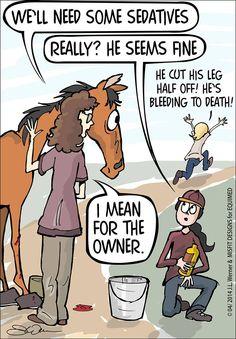 #EquestrianProblems comic