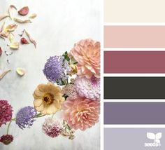 Design Seeds celebrate colors found in nature and the aesthetic of purposeful living. Colour Pallette, Colour Schemes, Color Patterns, Color Combos, Design Seeds, Palette Pantone, Color Concept, Color Lila, Color Balance
