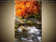 Tlačený obraz Jesenný vodopád 2335A_1S