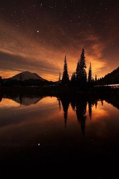 Mount Rainier National Park by Irwing Hernandez