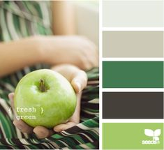 Color inspiration site