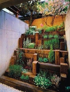 Patio Decor and Gardening / urban gardens, small space manipulation. No instructions, but good inspiration for taking a very narrow and challenging space and turning it into a tiered garden with vertical elements. Small Space Gardens.