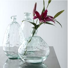 Express your creativity in your home by choosing this Home Decorators Collection Morph Clear Glass Vase. Multiple size and color options available. Flowers In Jars, Flower Vases, Bud Vases, Clear Glass Vases, Glass Bottles, Sea Glass, Decorative Accessories, Home Accessories, Bottles And Jars