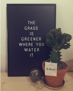 Letterbord quotes