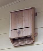 Bat Box, bat houses,bat boxes,diy,free woodworking plans,free projects,do it yourself