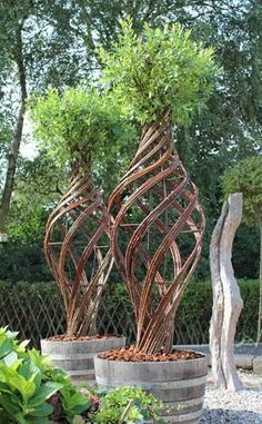 living willow sculptures ~ unique to say the least: