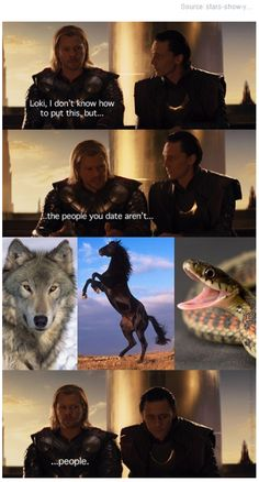 xD They so ARE people, Thor! Oh, and just for future reference, the only person that wasn't exactly human was Svadilfari.who helped Loki give birth to Sleipnir. Oh, Loki. Avengers Memes, Marvel Jokes, Marvel Funny, Loki Funny, Thor X Loki, Marvel Avengers, Marvel Comics, Tom Hiddleton, Iron Man Captain America