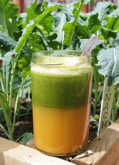 The Ovary Protector Juice.  Ingredients: 3 carrots, 1 green apple, 1 and 1/2 cup kale, 1 cup cilantro, 1/2 collard greens, 1/2 in. ginger root, 1/2 lemon.