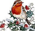 Christmas birds graphics