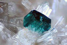http://www.reddit.com/r/MineralPorn/comments/2t3bmo/clinoatacamite_cerussite/ http://www.irocks.com/minerals/specimen/8852