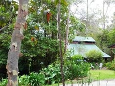 Bellbird Cottage B&B, luxurious 4.5 star B&B. In forest and by sea, enjoy a beautiful, unique and private room.