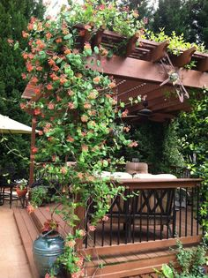 Best Climbing Plants for Pergolas and Trellises Checkout 19 best pergola plants for your garden. These climbing plants for pergolas and arbors can also be grown in small gardens easily.Checkout 19 best pergola plants for your garden. These climbing plants Diy Pergola, Building A Pergola, Small Pergola, Pergola Canopy, Pergola Kits, Pergola Ideas, Pergola Cover, Pergola Roof, Small Patio