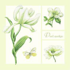 Kaart met witte bloemen en tekst 'Veel sterkte' Janneke Brinkman