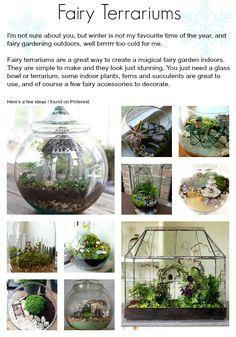 Fairy Terrariums