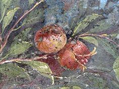 Pompeii -- Roman Fresco -- Painted Garden, Villa of Livia (Detail with Pomegranate). Rome Antique, Art Antique, Roman History, Art History, History Images, Ancient Rome, Ancient Art, Art Romain, Pompeii And Herculaneum