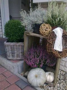 Display of herbs. box, heather and gourds with willow balls